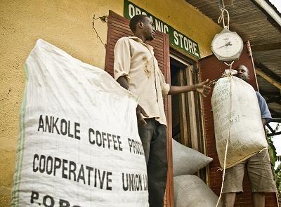 Ankole: donde el buen comercio se traduce en justicia y desarrollo
