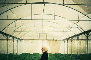 El Comercio Justo y la cooperación ayudan a mujeres de Palestina y Líbano a tener independencia y estabilidad