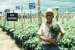 El Comercio Justo lucha contra el cambio climático
