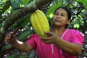 """IDEAS presenta el Informe """"Soberanía Alimentaria. La voz de los pequeños productores"""""""