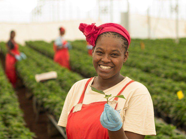 El movimiento del Comercio Justo reivindica su contribución a los Objetivos de Desarrollo Sostenible