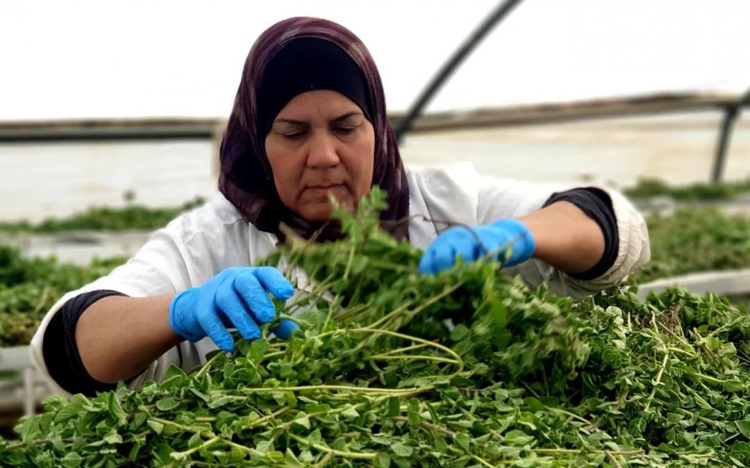 Encuentro de Mujeres Palestinas en La-tenda de tot el Món