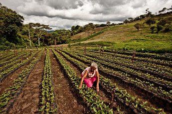 Encuentro con María Mercedes Alemán, de la cooperativa cafetalera «Aldea Global» (Nicaragua)
