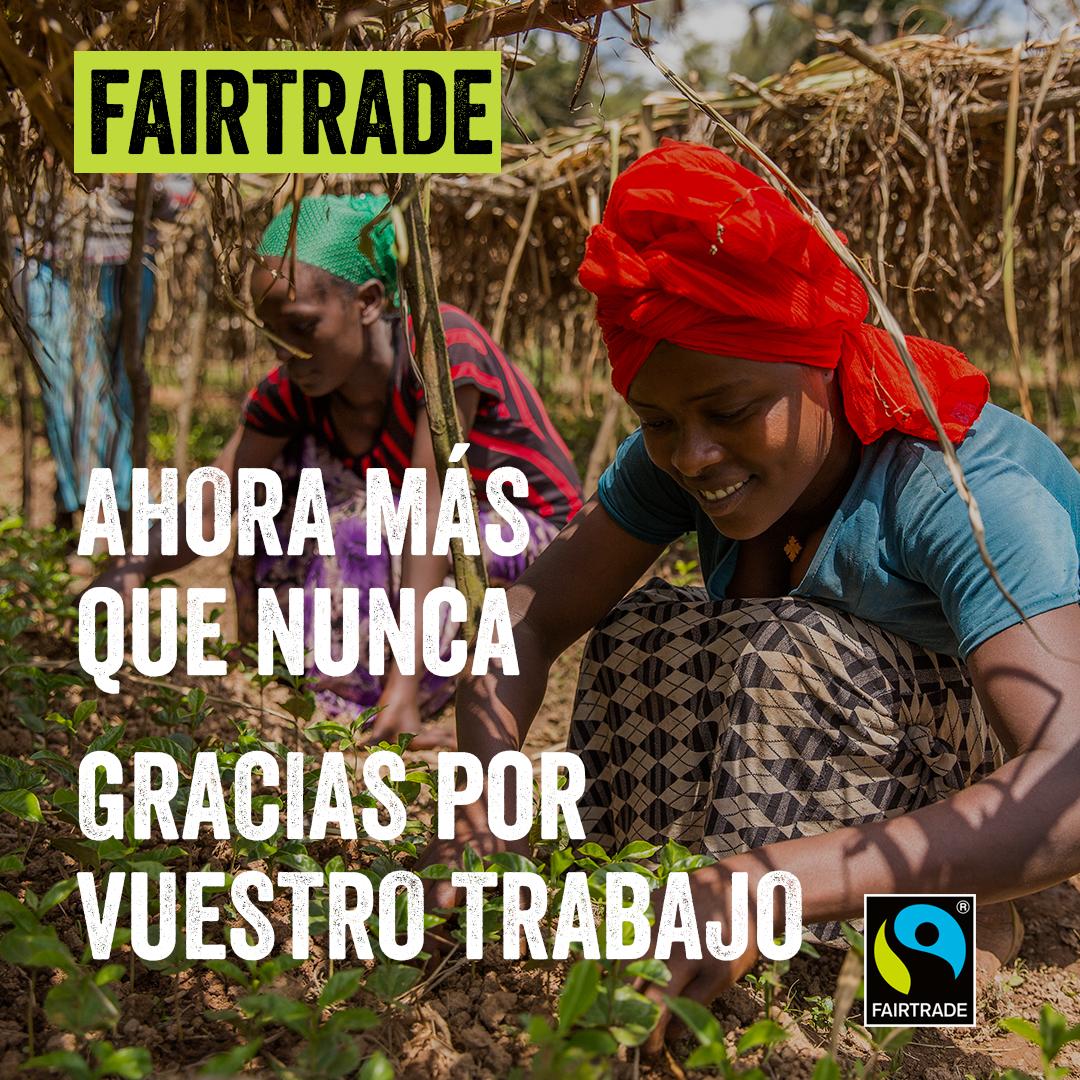 Productores Fairtrade