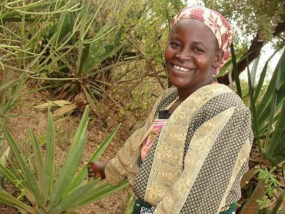 Kenia: crisis internacional, pequeños productores y respuestas desde el Comercio Justo