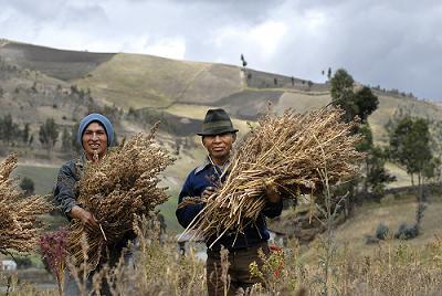 El Comercio Justo genera oportunidades y empleo digno para los sectores sociales más desfavorecidos