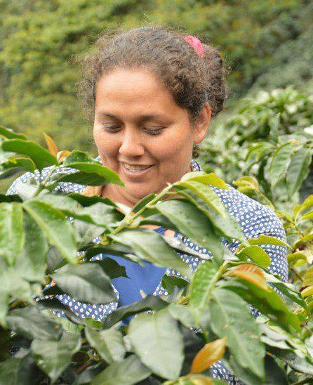Representantes de cooperativas de café y cacao de Perú explican los impactos del Comercio Justo