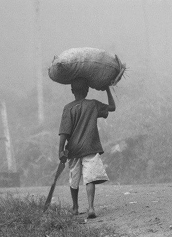 Nos unimos a la celebración del Año Internacional para la eliminación del Trabajo Infantil